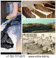 Лечение  в Санаторий Айша Биби
